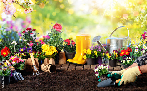 Poster Garden Gardening - Equipment For Gardener And Flower Pots In Sunny Garden