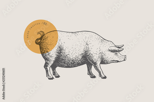 Graphic hand-drawn pig on a light background Fotobehang