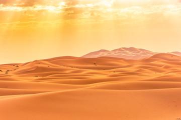 Fototapeta na wymiar Beautiful landscape of the Sahara Desert, erg Chebbi, Merzouga, morocco