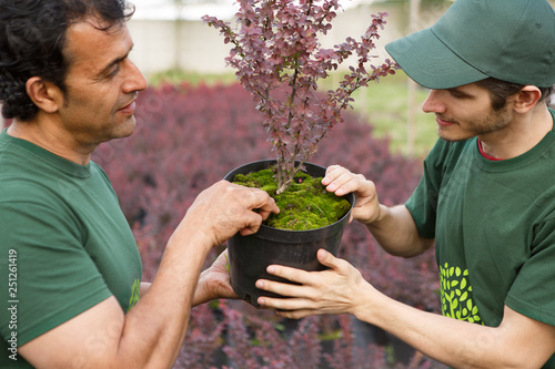 Photo  Close up of two garden center workers in green uniforms standing together, looking and touching plant in pot