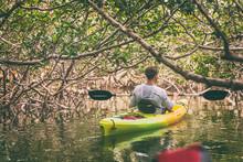 Kayak Man Kayaking In Mangrove Nature Of Everglades, Florida, USA Travel Activity. Watersport Tourism People Lifestyle.