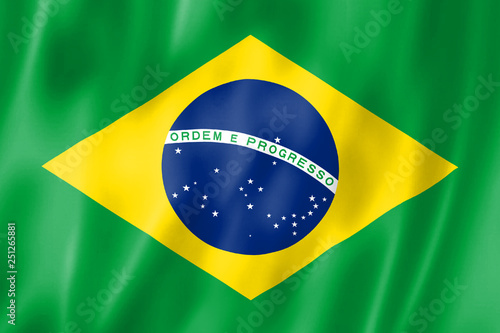 Fond de hotte en verre imprimé Brésil National flag of Brazil. The Brazilian characters. Illustration
