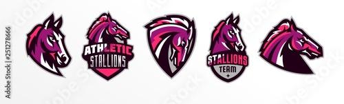 Fototapeta Set of horses logos. Sports logos of horses, racing stallions. Shield, text, mascot. Colorful collection, vector illustration obraz