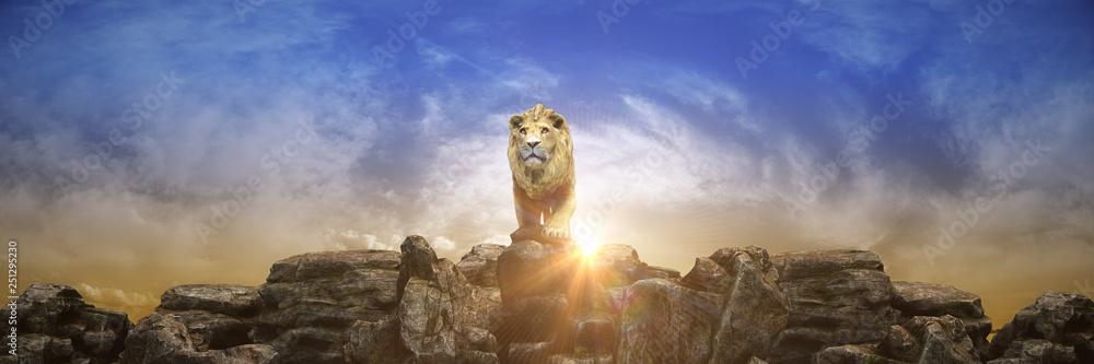 Fototapeta Lion at sunset. 3d rendering