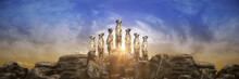Meerkat At Sunset. 3d Rendering