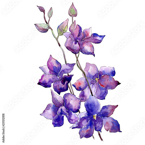 Fotomural Purple delphinium bouquet floral botanical flower