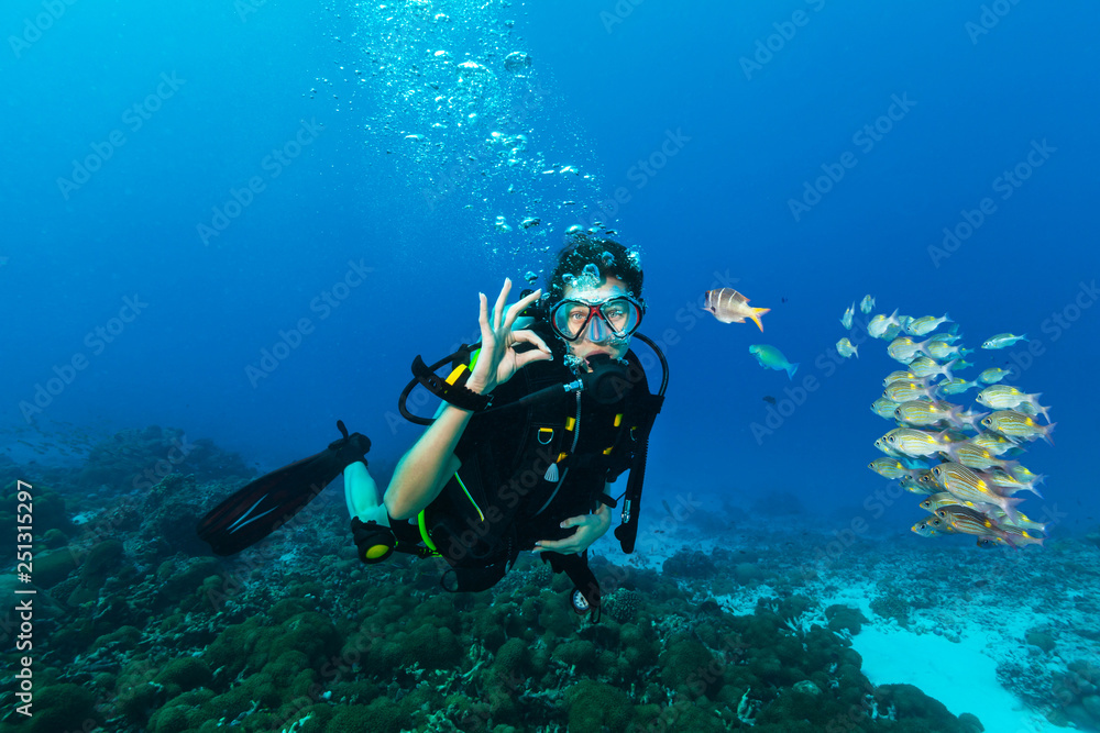 Fototapeta Young woman scuba diver showing OK gesture.