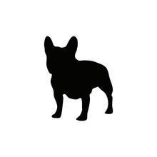 French Bulldog Silhouette Sketch In Black Color Isolated On White. Realistic Frenchie Vector Illustration.