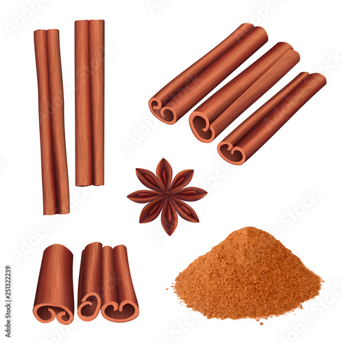 Fototapeta Cinnamon spice. Herbs dessert aromatic food stick cinnamon bark vector illustration. Aromatic cinnamon, ingredient for dessert, spice cooking obraz