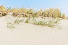 Rippled White Sand Dunes With ...