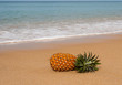 Pineapple lying on the sand on the shores of the Gulf of Andaman in Phuket, Thailand