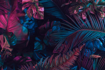 Panel Szklany PodświetlaneCreative fluorescent color layout made of tropical leaves. Flat lay neon colors. Nature concept.
