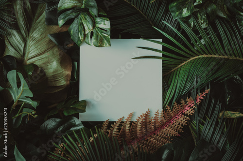 Photo  Creative layout made of tropical leaves with paper card note