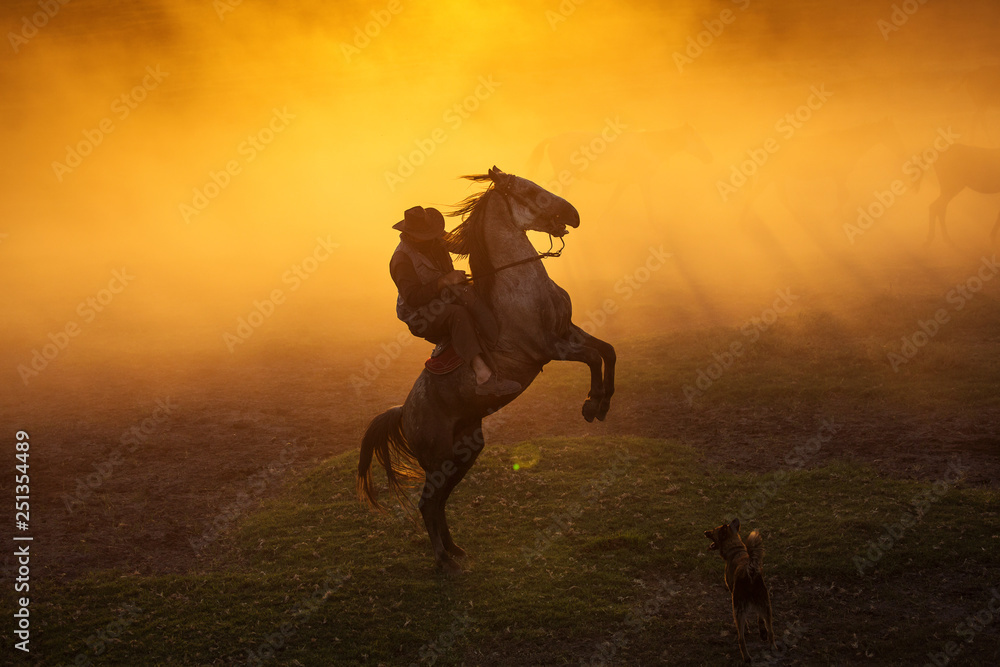 Obraz Cowboy puting his horse to stay in two feets at sunset with dust in background fototapeta, plakat