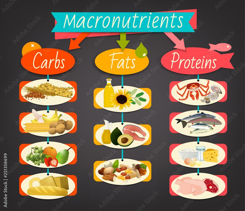 Fototapety, obrazy: Macronutrients landscape poster