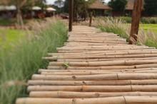 Bamboo Bridge In Nature