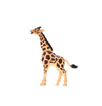 Toy Giraffe On White Isolated ...