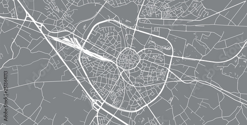 Urban vector city map of Hasselt, Belgium Wallpaper Mural