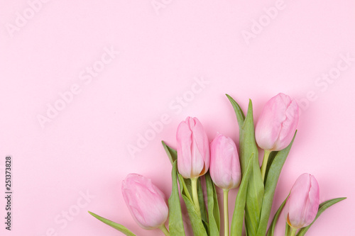 Wall Murals Tulip A bouquet of beautiful pink tulips flowers on a trendy pink background. Spring. holidays. top view. free place. flower frame