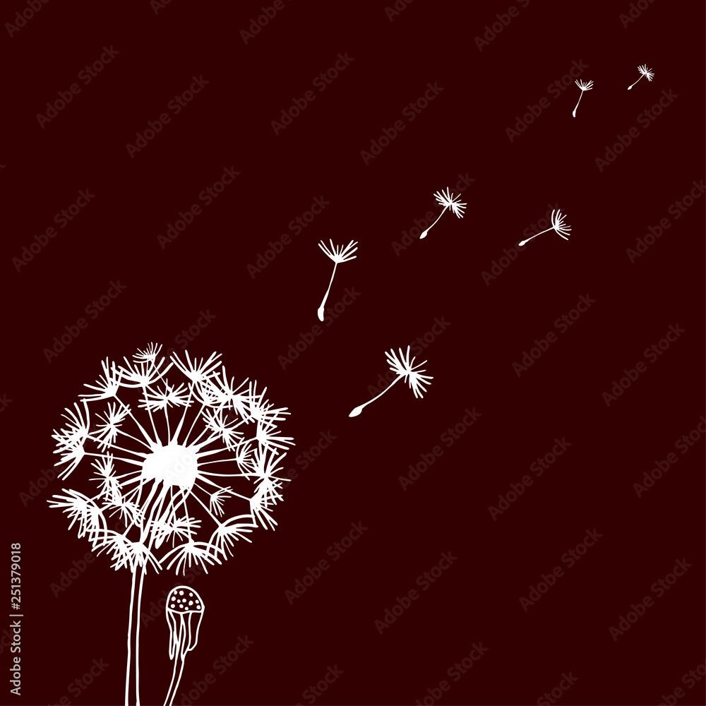 Fototapety, obrazy: Design of hand drawn Dandelion flowers on dark background. Flying blow dandelion. Vector graphic flowers