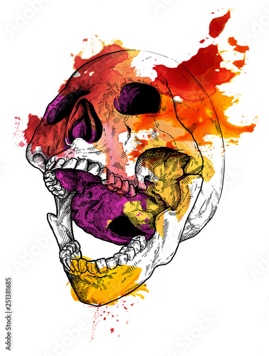 Canvas Prints Watercolor Skull Vanitas