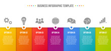 Colorful Infographic With Business Icons. Vector