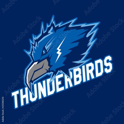 Obraz na płótnie Modern professional logo for sport team
