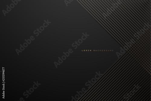 Fotografie, Obraz Gold lines on black background