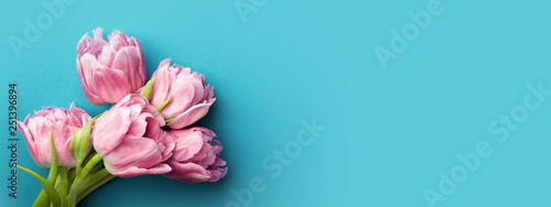 Spoed Fotobehang Bloemenwinkel Pink tulips on turquoise background with copy space. Top view, banner for website.