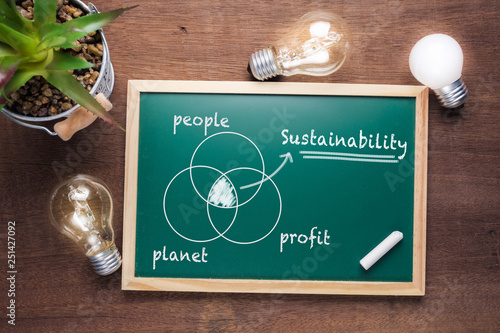 Obraz Sustainability Chart on Chalkboard - fototapety do salonu