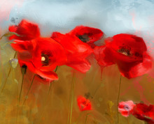 Spring And Summer Flowers Collection – Red Poppies Field In Oil Painting Style