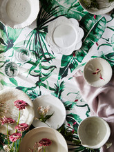 Plates On Floral Wallpaper With Petals