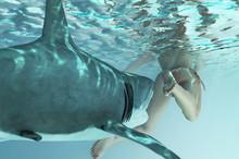 Shark Attacks Man In Water 3d ...