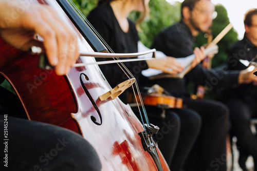 man playing the cello - 251452441