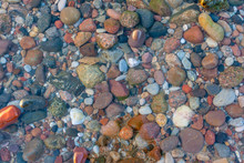 Seabed From Small Pebbles Thro...