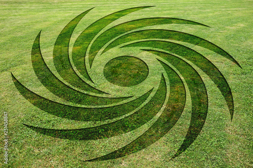 Concentric spirals symbols fake crop circle in the meadow Canvas Print