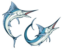 Blue Marlin Fish In Different ...