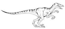 Velociraptor Vector Dinosaur ,...