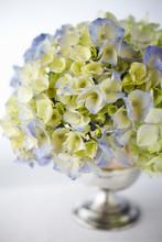Hydrangeas In Metal Vase