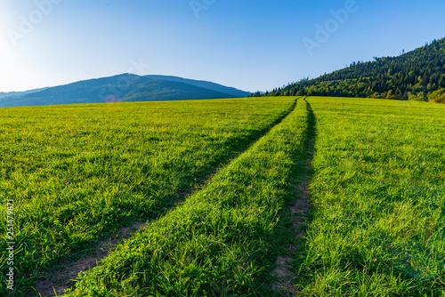 Montage in der Fensternische Gras Long straight road on a grassy field