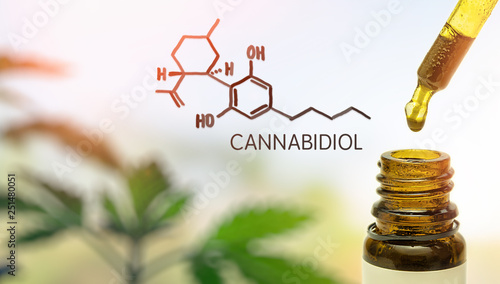 Fotografia  CBD in pipette against Hemp plant and chemical molecule