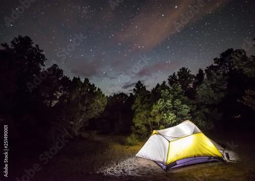 Fotografia, Obraz  Glowing Camping Tent at Ward Mountain, White Pine County, Nevada