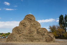 Dry Baled Hay Bales Stack, Rur...