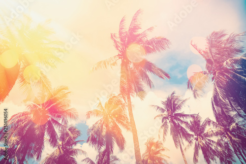 Canvas Prints Palm tree Tropical palm tree with colorful bokeh sun light on sunset sky cloud abstract background.