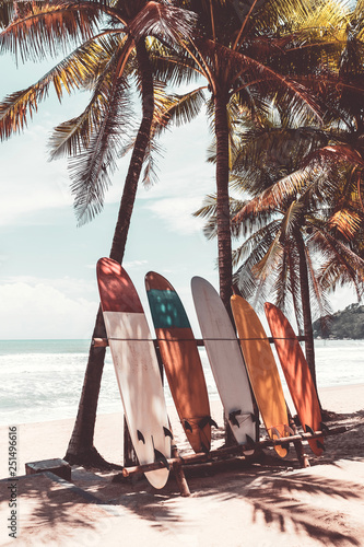 Surfboard and palm tree on beach background. Wall mural