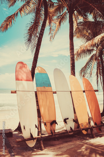 Photo sur Toile Beige Surfboard and palm tree on beach background.