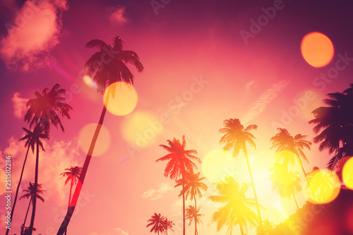 Canvas Prints Countryside Tropical palm tree with colorful bokeh sun light on sunset sky cloud abstract background.