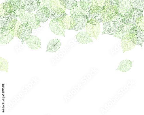Leaf background material Canvas