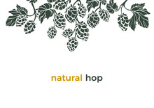 Vector Template. Natural Hop. Art Border