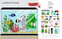 Flat Beautiful Aquarium Composition